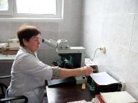 Научный сотрудник Н.П.Деменкова за работой  (подсчет форменных элементов крови)